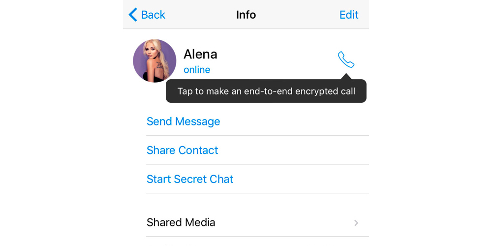Telegram introduces encrypted voice calls on Android 3